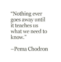 """Memes, Teaching, and 🤖: """"Nothing ever  goes away until  it teaches us  what we need to  know.""""  Pema Chodron"""