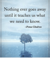 Memes, 🤖, and Knowing: Nothing ever goes away  until it teaches us what  we need to know.  ~Pema Chodron Nothing ever goes away until it teaches us what we need to know. - Pema Chodron powerofpositivity