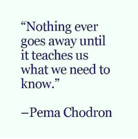 """Memes, 🤖, and Pema Chodron: """"Nothing ever  goes away until  it teaches us  what we need to  know.""""  Pema Chodron TheGoodQuote"""
