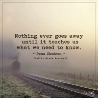 Memes, 🤖, and Als: Nothing ever goes away  until it teaches us  what we need to know.  Pema Chodron  Vi a IT h e Min d s J o urn al) Nothing ever goes away