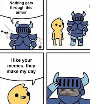 Memes, Best, and Armor: Nothing gets  through this  armor  I like your  memes, they  make my day Best. Compliment. Ever.