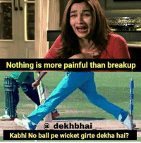 Ha yaar 💔: Nothing is more painful than breakup  a dekhbhai  Kabhi No ball pe wicket girte dekha hai? Ha yaar 💔