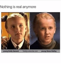 This got me! meme memes cheesey memesdaily: Nothing is real anymore  young Emily Osment  TotallyLookstike.com  young Draco Malfoy This got me! meme memes cheesey memesdaily