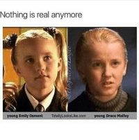 All memes are stolen my yours truly: Nothing is real anymore  young Emily Osment  TotalyLookstiko.com young Draco Malfoy All memes are stolen my yours truly