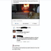 Dogs, Fire, and Girls: Nothing like starting the New Year out in front of a  roaring fire  2 likes 2 comments  th Like  Comment  Share  You andke this.  Is abi getting a little fatter?  Thu at 2:14PM Like  No, it is just an unflattering photo, and you  are not supposed to comment on a girl's  weight  5 hours ago . Unlike- 2  gaysleepy  i'm laughing sooo hard @ my dad's denial of how fat  our dog is Imao Woof woof