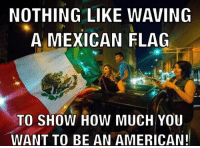 LIKE our page: fb.com/stophillaryin2016: NOTHING LIKE WAVING  A MEXICAN FLAG  TO SHOW HOW MUCH YOU  WANT TO BE AN AMERICAN! LIKE our page: fb.com/stophillaryin2016