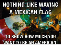 mexican flag: NOTHING LIKE WAVING  A MEXICAN FLAG  TO SHOW HOW MUCH YOU  WANT TO BE AN AMERICAN!