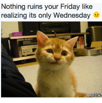 Only WEDNESDAY? But... like this page to see even funnier things from us! ⇒ OwnagePranks: Nothing ruins your Friday like  realizing its only Wednesday Only WEDNESDAY? But... like this page to see even funnier things from us! ⇒ OwnagePranks