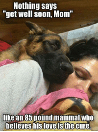 """Nothing says  """"get well soon, Mom""""  Audrey  like an 85 pound mammal who  believes his love is the cure."""