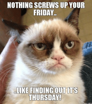 "Friday, It's Friday, and Lol: NOTHING SCREWS UP YOUR  FRIDAY.  THURSDAY! Edmonton Humane on Twitter: ""At least it's #Friday eve! #lol ..."