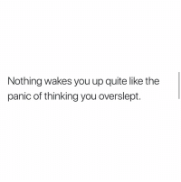 Memes, True, and Quite: Nothing wakes you up quite like the  panic of thinking you overslept. So True!