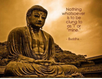 Everything is in continuous change..: Nothing  whatsoever  is to be  clung to  as  or  mine  Buddha Everything is in continuous change..