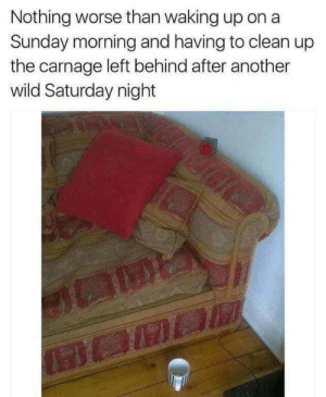 Dank, Memes, and Target: Nothing worse than waking up on a  Sunday morning and having to clean up  the carnage left behind after another  wild Saturday night Meirl by pkarnani MORE MEMES