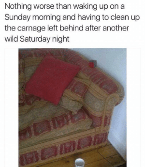 Dank, Memes, and Target: Nothing worse than waking up on a  Sunday morning and having to clean up  the carnage left behind after another  wild Saturday night meirl by xXZeemannXx MORE MEMES