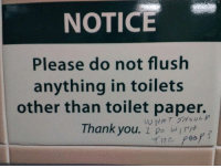 9gag, Memes, and Shit: NOTICE  Please do not flush  anything in toilets  other than toilet paper.  Thank you. 1 p ef Here I sit brokenhearted Wanted to shit but only farted Follow @9gag
