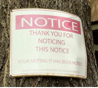 9gag, Memes, and Prank: NOTICE  THANK YOU FOR  NOTICING  THIS NOTICE  YOUR NOTING IT HAS BEEN NOTED  S BEEN REPORTED TOTHE AUTHORITIES  AND Thank you for your attention. Follow @9gag 9gag attention thankyou prank