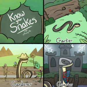 Snakes,  Know, and Know Your: nou  Siakes  Garten  Grardener [OC] Know your Snakes!