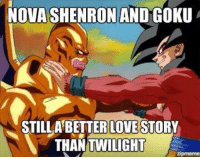 Like if you agree ~AT: NOVA SHENRON AND GOKU  STILL A BETTER LOVESTORY  THAN TWILIGHT  zipmeme Like if you agree ~AT