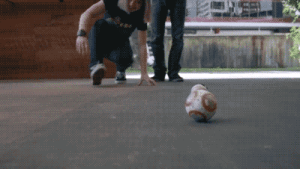 Star Wars, Tumblr, and Blog: novelty-gift-ideas:  BB-8 Robot with Force Band