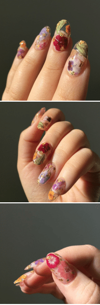 Tumblr, Blog, and Flowers: novelty-gift-ideas:  Dried Flowers Press-On Nails