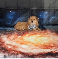 novelty-gift-ideas:  Galaxy Bedding  : novelty-gift-ideas:  Galaxy Bedding