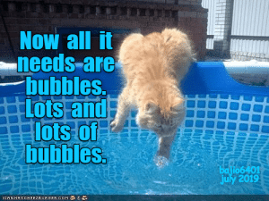 bubbles: Now all it  needs-are  bubbles.  Lots and  lots of  bubbles  batio6401  july 2019  ICANHASCHEEZBURGER.OOM
