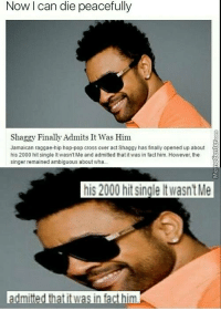 Remember this song?: Now can die peacefully  Shaggy Finally Admits It Was Him  Jamaican raggae-hip hop-pop cross over act Shaggy has finally opened up about  his 2000 hit single lt wasn't Me and admitted that it was in fact him. However, the  singer remained ambiguous about wha  his 2000 hitsingleltwasntMe  dmitted that it was in fact him Remember this song?