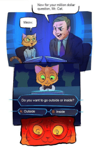"""Memes, Cat, and Via: Now for your million dollar  question, Mr. Cat.  Meow  Do you want to go outside or inside?  A: Outside  B: Inside <p>Impossible to choose via /r/memes <a href=""""https://ift.tt/2Naue19"""">https://ift.tt/2Naue19</a></p>"""