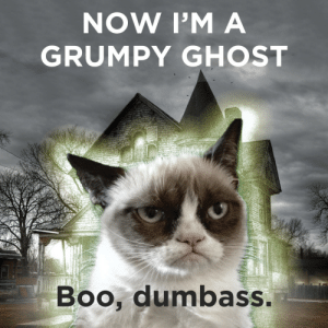 The Saga will continue in the afterlife: NOW I'M A  GRUMPY GHOST  Boo, dumbass The Saga will continue in the afterlife