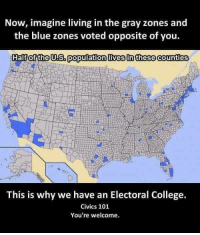 College, Memes, and Blue: Now, imagine living in the gray zones and  the blue zones voted opposite of you.  Half of the US. population lives in these counties  This is why we have an Electoral College.  Civics 101  You're welcome. In case you were born in the last 25 years and have never experienced being on the losing end.