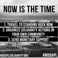 Community, Memes, and Police: NOW IS THE TIME  1. TRAVEL TO STANDING ROCK NOW  2. ORGANIZE SOLIDARITY ACTIONS IN  YOUR OWN COMMUNITY  3. SEND MONETARY SUPPORT  #NODAPL  NODAPLSOLIDARITY ORG The situation in Standing Rock is escalating. Police from five states are using tasers, pepper spray, batons, sound grenades, bean bag bullets and other weapons to forcibly evict peaceful water protectors from the path of the pipeline.   The time to rise up and fight to protect the water is now.   The Red Warrior Camp has put out a call for a Global Solidarity Campaign. There are three ways to join the fight:   1. Organize yourself and/or large groups of people from your community to come to Standing Rock. Contact us at Organizing@NoDAPLSolidarity.org to discuss details and schedule a time frame.  2. TAKE ACTION IN YOUR OWN COMMUNITIES. Target the Army Corp of Engineers, banks, pipeline companies, corporations and elected officials behind the pipeline. Taking action includes lock-downs at offices, sit-ins, taking up space, rallies, call-in days, divesting from banks, mass mailings and interruptions. Register at NoDAPLSolidarity.org to join our network of Global Solidarity.  3. Send monetary support to: Official Red Warrior Camp Fund: www.gofundme.com/redwarriorcamp; Official Legal Fund: generosity.com/fundraising/red-warrior-camp-legal-fund-nodapl  More info and the full call to action text: https://nodaplsolidarity.org/the-call-to-action/  There will also be a conference call this Sunday at 8pm est to coordinate global solidarity actions. Register here for the call here: http://bit.ly/2eOE5v6