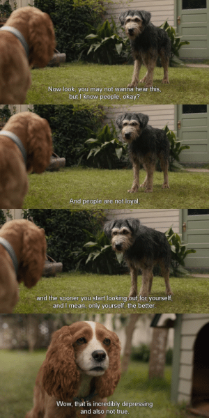 penzeskarneval:  freshmoviequotes:  Lady and the Tramp (2019)  i hate that this is true: Now look, you may not wanna hear this,  but I know people, okay?   And people are not loyal,   and the sooner you start looking out for yourself,  and I mean, only yourself, the better.   Wow, that is incredibly depressing  and also not true. penzeskarneval:  freshmoviequotes:  Lady and the Tramp (2019)  i hate that this is true