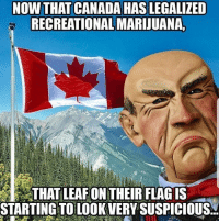 Memes, Canada, and Marijuana: NOW THAT CANADA HAS LEGALIZED  RECREATIONAL MARIJUANA,  THAT LEAFON THEIR FLAG IS  STARTING TO LOOK VERY SUSPICIOUS. Welllll this explains a lot 🍁