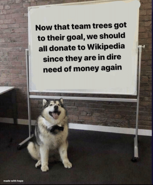 browsedankmemes:every dollar counts: Now that team trees got  to their goal, we should  all donate to Wikipedia  since they are in dire  need of money again  made with hope browsedankmemes:every dollar counts