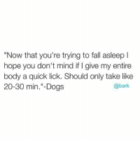 """Dogs, Fall, and Memes: """"Now that you're trying to fall asleep l  hope you don't mind if l give my entire  body a quick lick. Should only take like  @bark  20-30 min. Dogs Just gonna loudly lick my crotch brb. Via @bark"""