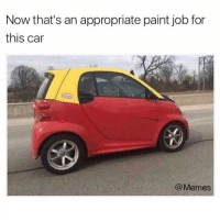 Perfect!: Now that's an appropriate paint job for  this car  @Memes Perfect!