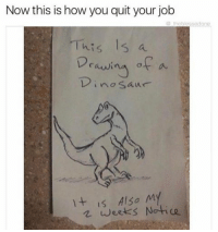 Memes, Jobs, and Quite: Now this is how you quit your job  sedone  This a  Drawi  no Saur  It is Also My  weeks Notice 😂😂 (@_theblessedone)