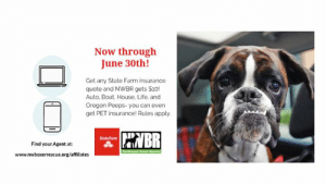 Pet Insurance: Now through  June 30th!  Get any State Farm insurance  quote and NWBR gets $10!  Auto, Boat, House, Life, and  Oregon Peeps-you can even  get PET insurance! Rules apply  StateFarnm  Find your Agent at:  www.nwboxerrescue.org/affiliates