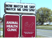 "Bad, Friday, and Funny: NOW WATCH ME SNIP  WATCH ME SPAY SPAY  ANIMAL  HEALTH  CLINIC  Mondoy-Friday 7:30-5:30  Saturday 8:00-Noon <h2><b><a href=""https://youtu.be/fo6tOAbOP_I"" target=""_blank"">Tonight Show Bad Signs</a>!</b></h2><p>Jimmy asked you to send in photos of funny or weird signs you've seen and now he shares some of his favorite submissions!</p><p>Have a bad sign that you'd like to share? Send it to badsigns@tonightshow.com! </p><figure class=""tmblr-embed tmblr-full"" data-provider=""youtube"" data-orig-width=""540"" data-orig-height=""304"" data-url=""https%3A%2F%2Fyoutu.be%2Ffo6tOAbOP_I""><iframe width=""540"" height=""304"" id=""youtube_iframe"" src=""https://www.youtube.com/embed/fo6tOAbOP_I?feature=oembed&enablejsapi=1&origin=https://safe.txmblr.com&wmode=opaque"" frameborder=""0"" allowfullscreen=""""></iframe></figure>"