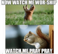 <p>Jesus himself created this dank meme. Like if you agree</p>: NOW WATCH ME WOR-SHIP  WATCH ME PRAY PRAY <p>Jesus himself created this dank meme. Like if you agree</p>