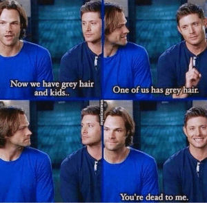 Memes, Grey, and Hair: Now we have grey hair  and kids  One of us has grey hair  S.  You're dead to me Oh jensen 😂  ~Mrs. Winchester.
