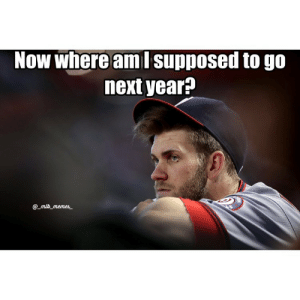 With Stanton going to the Yankees, Harper to the Cubs next year confirmed: Now where aml supposed to go  next year?  @mlb memes With Stanton going to the Yankees, Harper to the Cubs next year confirmed