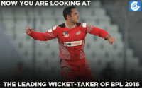 Memes, 🤖, and Cable: NOW YOU ARE LOOKING AT  BBs CABLE  THE LEADING WICKET TAKER OF BPL 2016 Mohammad Nabi picked 7 wickets thus far in BPL 2016, Most by any bowler.