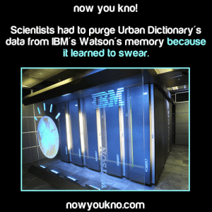 "obeechris:  tornadoofstupidity:  jami-c:  harshflow:  zarlizzard:  joetheyarharpirate:  jammerlee:  nowyoukno:  Source for more facts follow NowYouKno  Emergent behavior at its finest! XD  ""And now we would like to demonstrate Watson, the latest in artificial intelligence. How are you, Watson?"" ""Fuck off, dickass.""  So what? Let the machine swear. If you want it to be as intelligent as possible, it should know as much as it can.Fuck's sake, even AI is sheltered.  *pounding on table* LET THE ROBOT SWEAR! LET THE ROBOT SWEAR!  Watson started saying ""bullshit"" instead of ""false"" …which is one of my favorite things that has ever happened.   Let Watson say fuck  Reblog if you want a swearing AI. : now you kno!  Scientists had to purge Urban Dictionary's  data from IBM's Watson's memory because  it learned to swear,  nowyoukno.com obeechris:  tornadoofstupidity:  jami-c:  harshflow:  zarlizzard:  joetheyarharpirate:  jammerlee:  nowyoukno:  Source for more facts follow NowYouKno  Emergent behavior at its finest! XD  ""And now we would like to demonstrate Watson, the latest in artificial intelligence. How are you, Watson?"" ""Fuck off, dickass.""  So what? Let the machine swear. If you want it to be as intelligent as possible, it should know as much as it can.Fuck's sake, even AI is sheltered.  *pounding on table* LET THE ROBOT SWEAR! LET THE ROBOT SWEAR!  Watson started saying ""bullshit"" instead of ""false"" …which is one of my favorite things that has ever happened.   Let Watson say fuck  Reblog if you want a swearing AI."