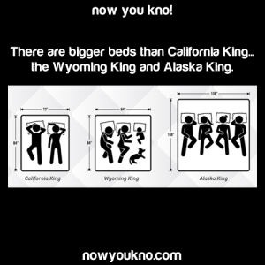 canadian-kazoo-god:  goweninsane:  cold-dead-angel:  the-worm-man:  education:Source: http://bit.ly/2N2Nqi4 Poly rights  finally, a bed big enough for me and my size 13 nikes   *gets an Alaskan king bed all for myself*  owen gave me the idea :): now you kno!  There are bigger beds than California King..  the Wyoming King and Alaska King.  84  California King  Alaska King  Wyoming King  nowyoukno.com canadian-kazoo-god:  goweninsane:  cold-dead-angel:  the-worm-man:  education:Source: http://bit.ly/2N2Nqi4 Poly rights  finally, a bed big enough for me and my size 13 nikes   *gets an Alaskan king bed all for myself*  owen gave me the idea :)