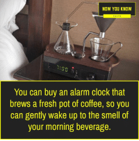 now you know: NOW YOU KNOW  FACTS  :00  You can buy an alarm clock that  brews a fresh pot of coffee, so you  can gently wake up to the smell of  your morning beverage.