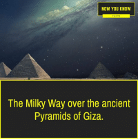 now you know: NOW YOU KNOW  FACTS  The Milky Way over the ancient  Pyramids of Giza.