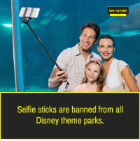 now you know: NOW YOU KNOW  Selfie sticks are banned from all  Disney theme parks.