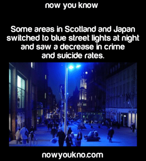 Crime, Facts, and Saw: now you know  Some areas in Scotland and Japan  switched to blue street lights at night  and saw a decrease in crime  and suicide rates.  nowyoukno.com nowyoukno:  jessi2222:  nowyoukno:  Source for more facts follow NowYouKno   Science side of Tumblr, explain please  The color blue has a calming effect on people, it's the same reason why blue is used as the main color on virtually all social media site.