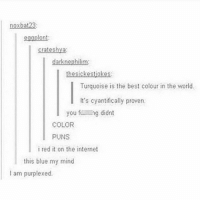 Go to Sleep, Internet, and Memes: nox bat23:  darknephilim:  thesickestjokes.  Turquoise is the best colour in the world.  It's cyantifically proven.  you full  ng didnt  COLOR  PUNS  i red it on the internet  this blue my mind  I am purplexed. I'm reddy to go to sleep